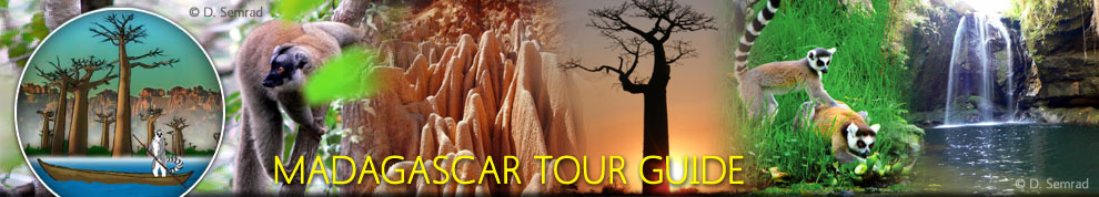 Madagascar Tour Guide | The Easy way to discover Madagacsar